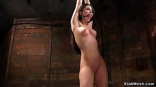 Tied up whipped and hung stunner